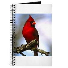 Bird Photo Journal