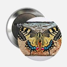 """butterfly colorful art design 2.25"""" Button"""
