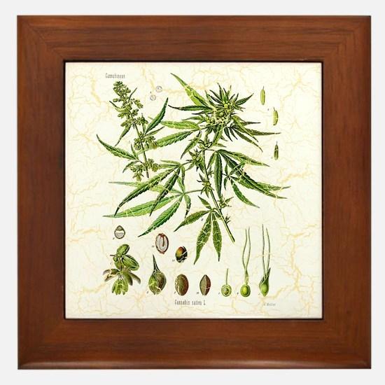 Crackled Cannabis Framed Tile