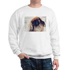 Unique Pekingese Sweatshirt