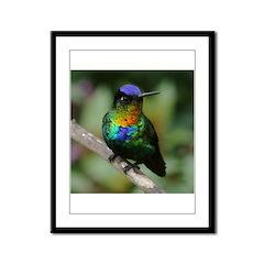 Bird Photo Framed Panel Print