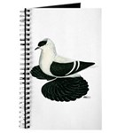 Swallow Saxon Fullhead Pigeon Journal