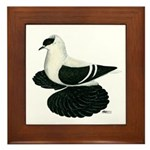 Swallow Saxon Fullhead Pigeon Framed Tile
