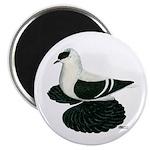 "Swallow Saxon Fullhead Pigeon 2.25"" Magnet (1"