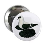 "Swallow Saxon Fullhead Pigeon 2.25"" Button (1"
