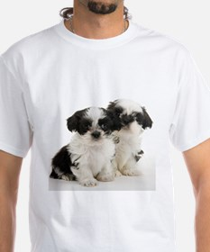 Shih Tzu Puppy Shirt