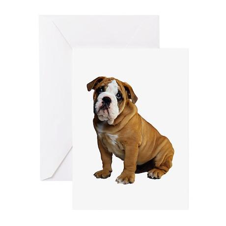 English Bulldog Greeting Cards (Pk of 20)