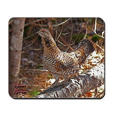Female Spruce Grouse 2 Mousepad