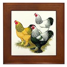 Brahma Rooster Assortment Framed Tile