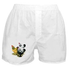 Brahma Rooster Assortment Boxer Shorts