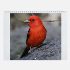 Bird Photo Wall Calendar