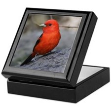 Scarlet Tanager Bird Photo Keepsake Box