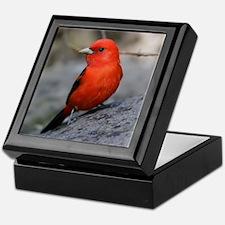 Scarlet Tanager Bird Photo Keepsake Box