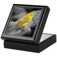 Yellow Warbler Bird Photo Keepsake Box