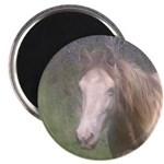 "2.25""Magnet10pack,ClassicCreamChampagneTWH Filly"