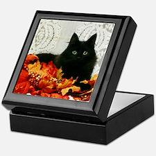 Cute Cat eyes Keepsake Box