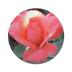 Riccoboni Pink Rose Ornament (Round)