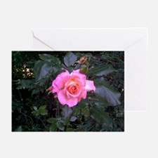 Rose in the Redwoods Greeting Cards (Pk of 10)