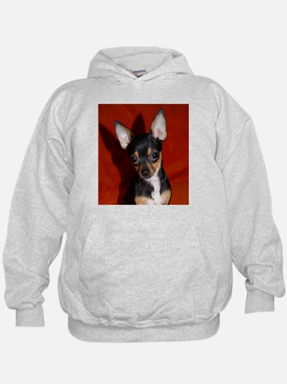 Unique Chihuahua Hoody