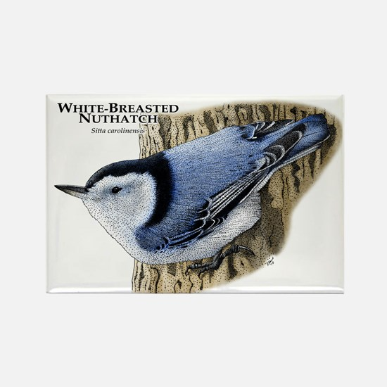 White-Breasted Nuthatch Rectangle Magnet