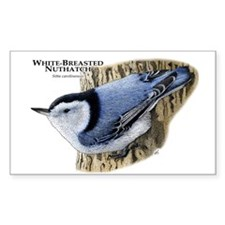 White-Breasted Nuthatch Decal