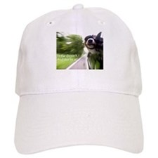 To the Dogpark! Baseball Cap