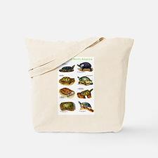 Turtles of North America Tote Bag