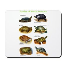 Turtles of North America Mousepad