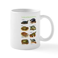 Turtles of North America Mug