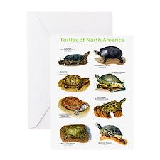 Turtles of North America Greeting Card