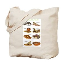 Lizards of the World Tote Bag