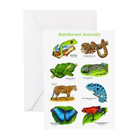 Rainforest Animals Greeting Card