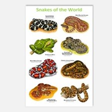 Snakes of the World Postcards (Package of 8)