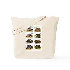Tortoises of the World Tote Bag