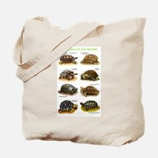 Tortoises of the World Tote Bag