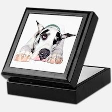 Great Dane Shy Harlequin Keepsake Box