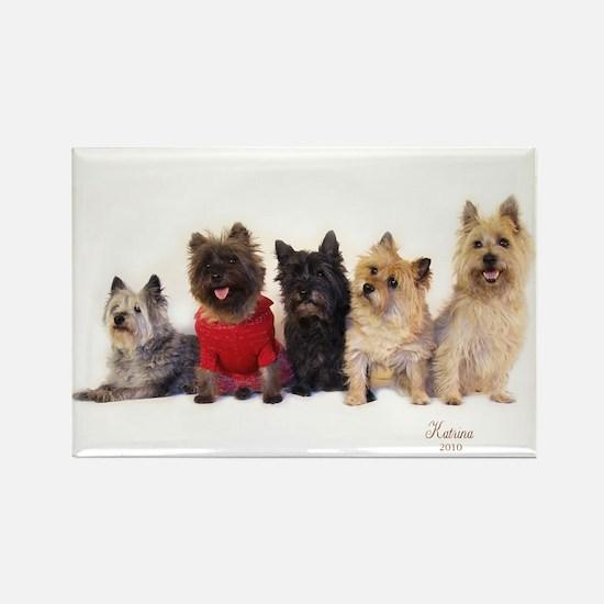 Cairn Terrier Friends Rectangle Magnet