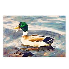 Mallard Duck Watercolor Postcards (Package of 8)