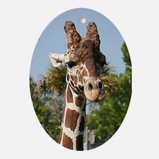 Ornament-Giraffe