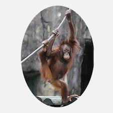 Ornament-Orangutan