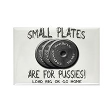 Small plates... Rectangle Magnet