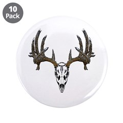 Whitetail deer skull 3.5