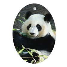 Ornament-Panda