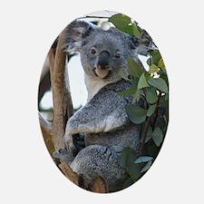 Ornament-Koala