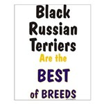 Black Russian Terrier Best Breed Small Poster