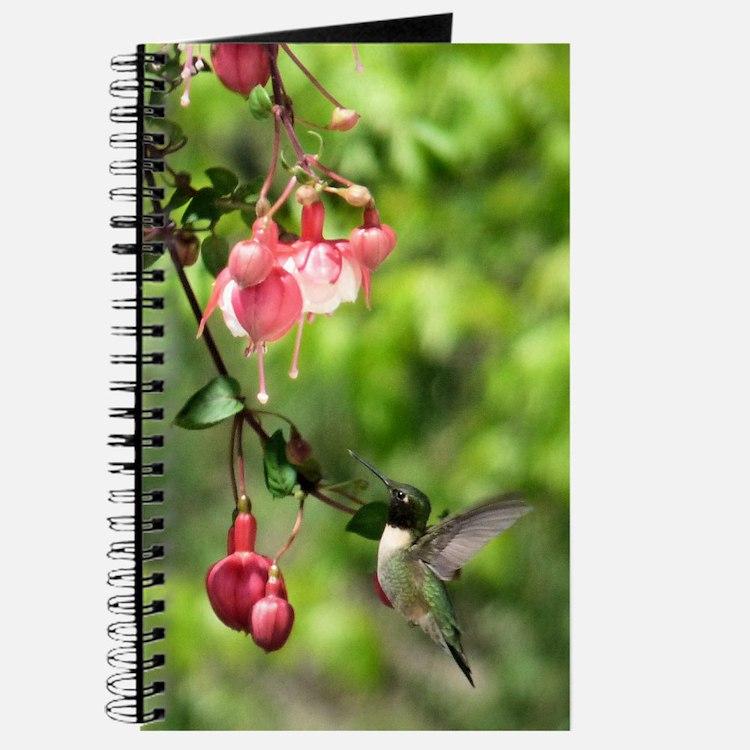 Black-chinned HB Journal