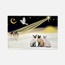XmasDove-3 Siamese cats Rectangle Magnet