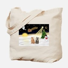 Night Flight-2 Tabbys Tote Bag