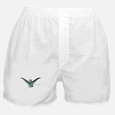 T Bird Emblem Bird Boxer Shorts