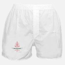 T Bird Emblem Pinstripes Boxer Shorts
